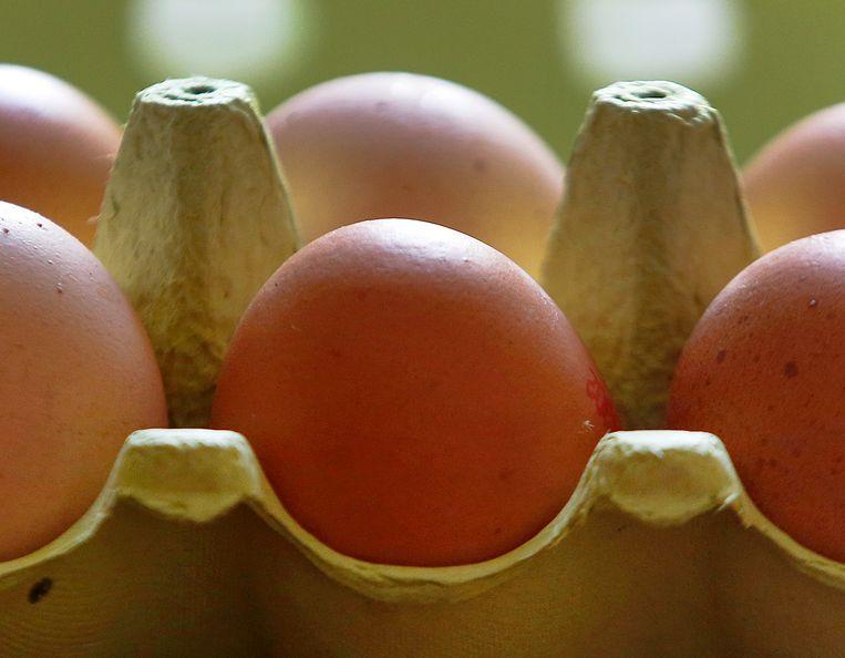 Eiwitten zitten in onder meer vlees, vis, peulvruchten, eieren, zuivel en sojaproducten. Maar ook steeds meer in shakes, repen en koekjes. Ze worden toegevoegd aan yoghurt en kwark. De vraag is: wordt u daar beter van?