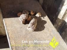 Jongeren laten poep achter op bankje van hangplek in Groot-Ammers