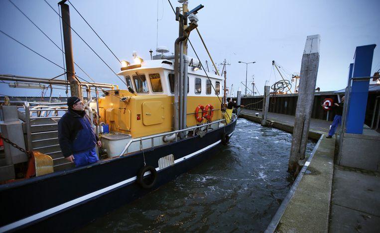 Garnalenvissers keerden gisteren uit voorzorg terug naar de haven van Den Oever Beeld anp