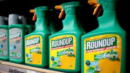 Roundup binnenkort verboden voor particulieren