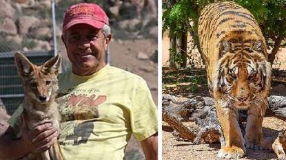 Tijger valt directeur van wildreservaat aan in VS