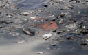 Wrakstukken van de gecrashte Boeing 737 Max drijven in zee. De romp van het toestel is nog niet gevonden.