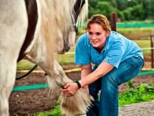 Tuil krijgt een praktijk voor dierenfysiotherapie