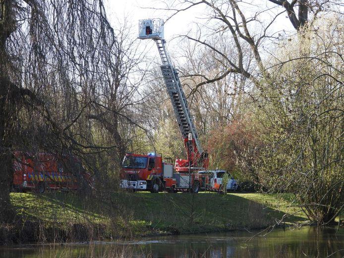 Het lichaam dat dinsdag gevonden werd langs de Buiten Boeverievest, is dat van een vermiste Pool.