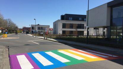 Regenboogzebrapad om holebigemeenschap te steunen duikt nu al op in Oudenburg