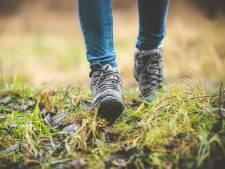 Rond de Liemers lopen op 71 kilometer wandelpad