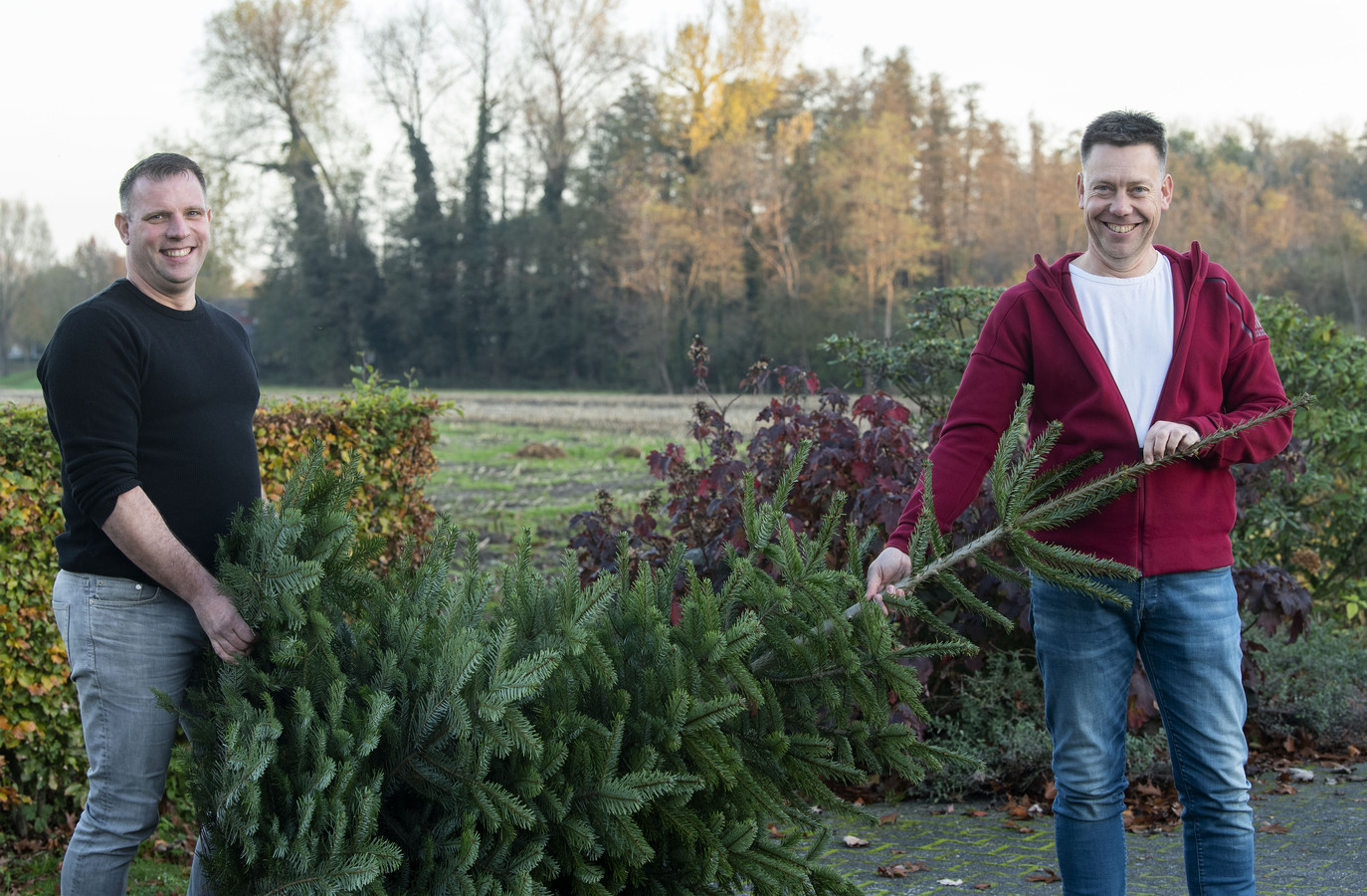 Nederland hunkert naar gezelligheid, en dus moet de kerstboom dit jaar extra vroeg de kamer in. Maar hoe hou je zo'n boom eigenlijk mooi tot Kerstmis? Kerstboomexperts René Sleurink (links) en René Kuiphuis van Den Noaldboom in Hengelo weten het.