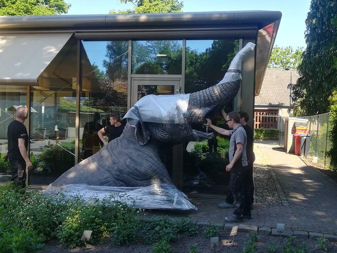 De mastodont die gisteren bij het Klok en Peelmuseum in Asten werd geplaatst.