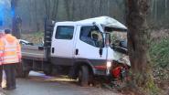 24-jarige Bestuurder kleine vrachtwagen kritiek na klap tegen boom
