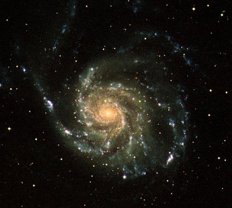 Eind december maakte Galex ook deze waarneming van de Messier 101, ook wel het Windmolenstelsel genoemd. Het stelsel werd in 1781 ontdekt en is bijna twee keer zo groot als de Melkweg. In totaal bevat Messier 101 naar schatting minstens een biljoen sterren, waarvan er honderd miljard vergelijkbaar zijn met onze zon, qua temperatuur en levensduur. Beeld afp