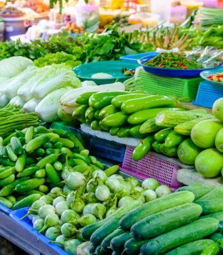 Tot de helft minder groenten door de hitte: ergste situatie in 40 jaar