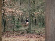 Motorcrosser rijdt door na aanrijding met boa in bossen bij Vessem