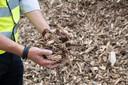 Bergen houtsnippers als brandstof voor de biomassacentrale.
