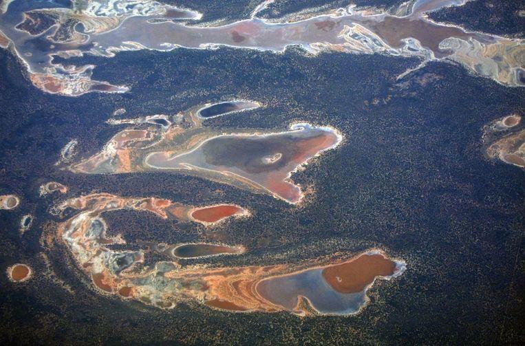Zoutvlaktes en dammen verspreid over de droge landbouwgrond in West-Australië. De uitdroging is een gevolg van El Nino. Beeld reuters