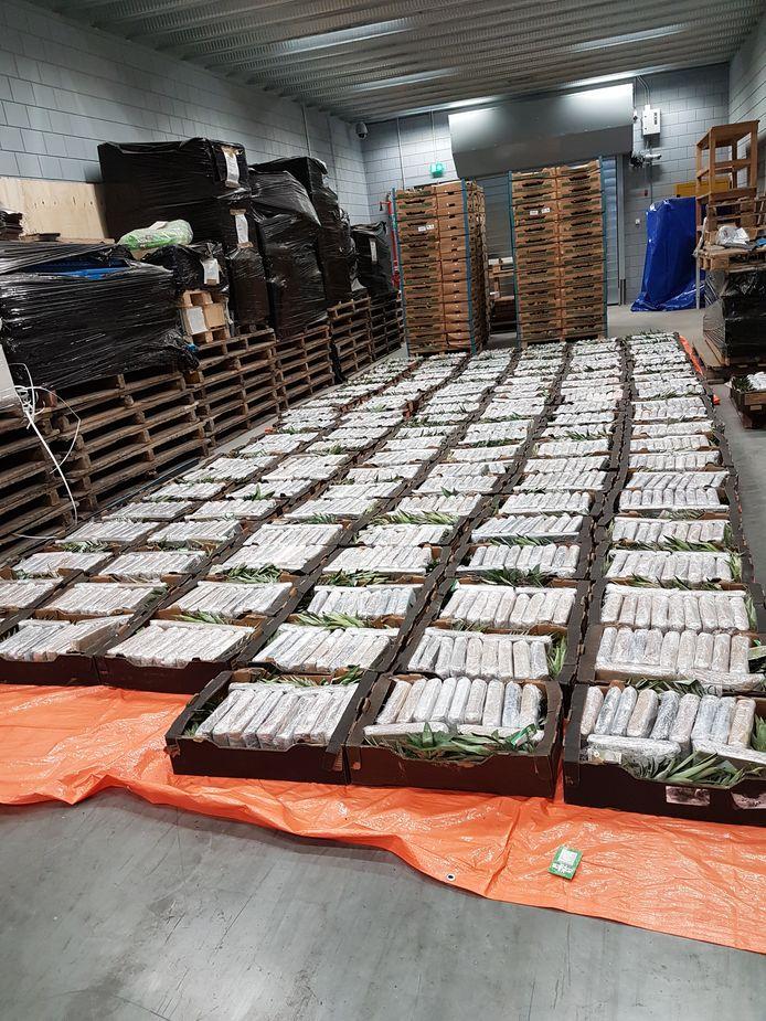 In een loods in Oudenbosch vond de politie in 2017 een partij van 1500 kilo cocaïne, verstopt tussen de ananassen.