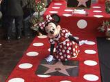 Eigen Hollywood-ster voor Minnie Mouse