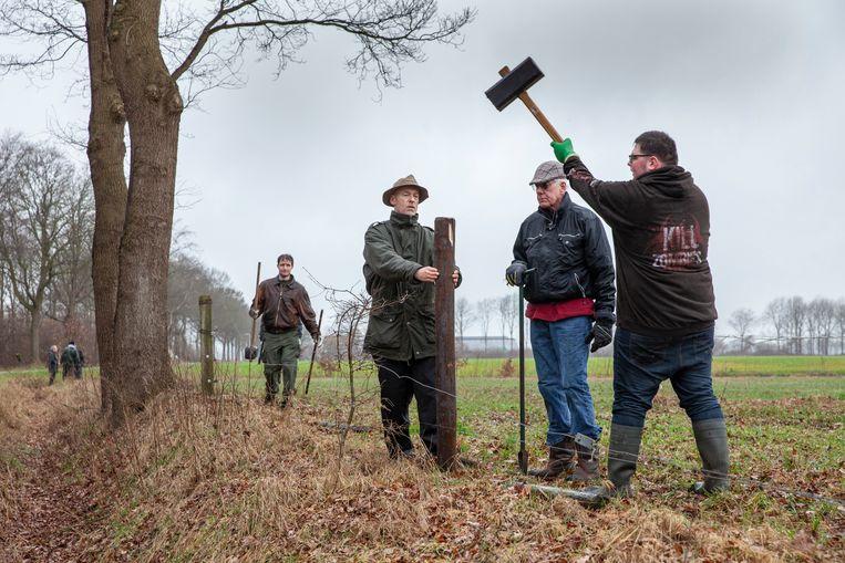 Het team van Wolf-Fencing plaatst een wolfbestendige omheining rond het land van de familie Teesselink in Hellendoorn. Beeld  Foto Harry Cock / de Volkskrant