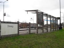 Heus waar, bushalte in Schijndel is 'pronkstuk' voor Meierijstad