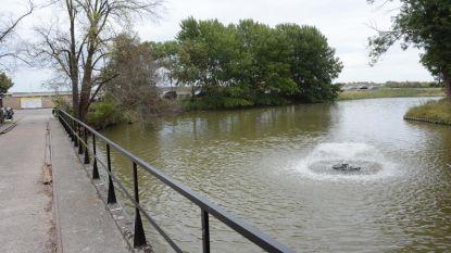 Vissterfte in Fort Liefkenshoek blijft aanhouden