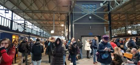 'Er staat een paard op het spoor': treinen tussen Eindhoven en Helmond rijden weer