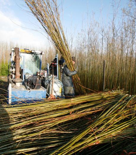 Van beekridders tot struingids: bijna vier ton voor innovatieve projecten in Rivierenland