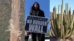 Kritiek nadat Trump gebied vol zeldzame cactussen laat vernietigen voor bouw grensmuur