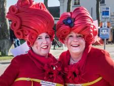 Carnaval in Land van Cuijk en Gennep, gelukkig hebben we de foto's