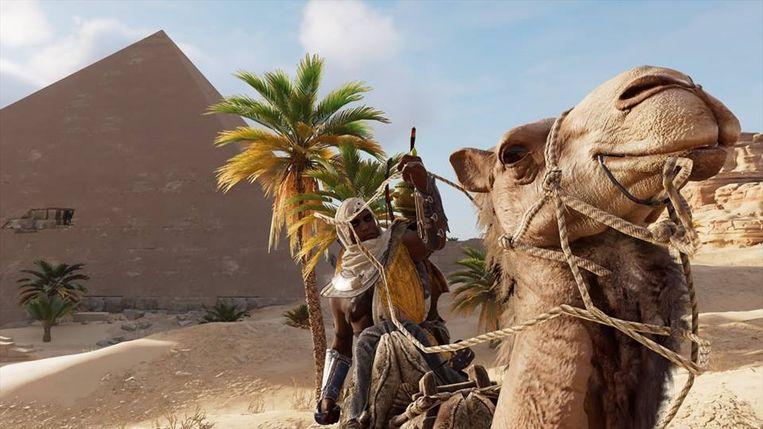 Kamelen zijn beestig.
