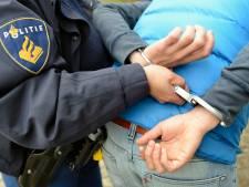 Werkstraf voor bedreigen en mishandelen van agenten op Boreelplein in Deventer