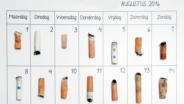 De Kleijn: 'Er zit rattengif in sigaretten. Waarom zou je dat in je lichaam stoppen?' Beeld Lotte Bronsgeest