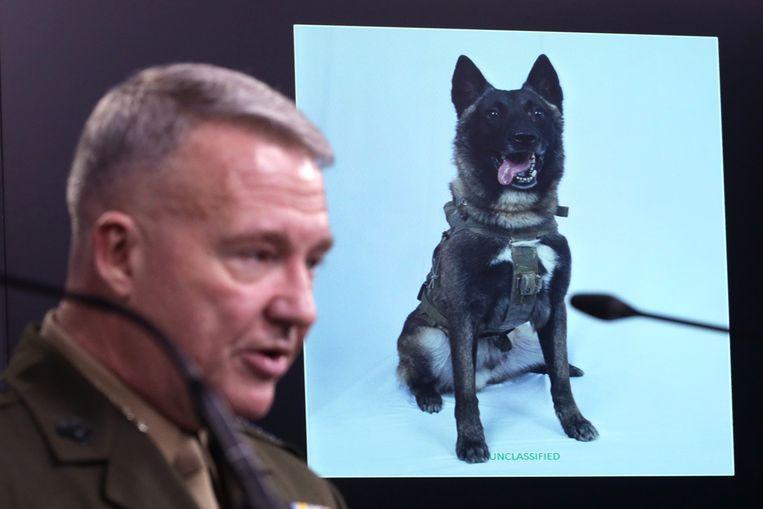 Generaal Kenneth McKenzie, commandant van Central Command, praat over de rol die een hond van de Amerikaanse commando-eenheid speelde bij het opsporen van Al-Baghdadi. Beeld Getty Images