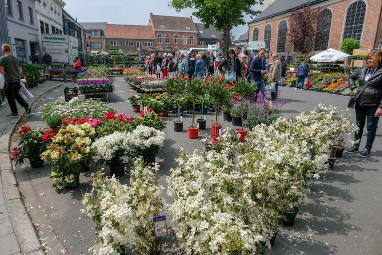 Bloemen- en plantenmarkt