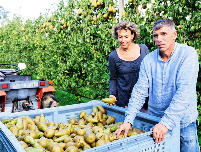 Jeanette Litjens en Toine Janssen van Haneman Biofruit.
