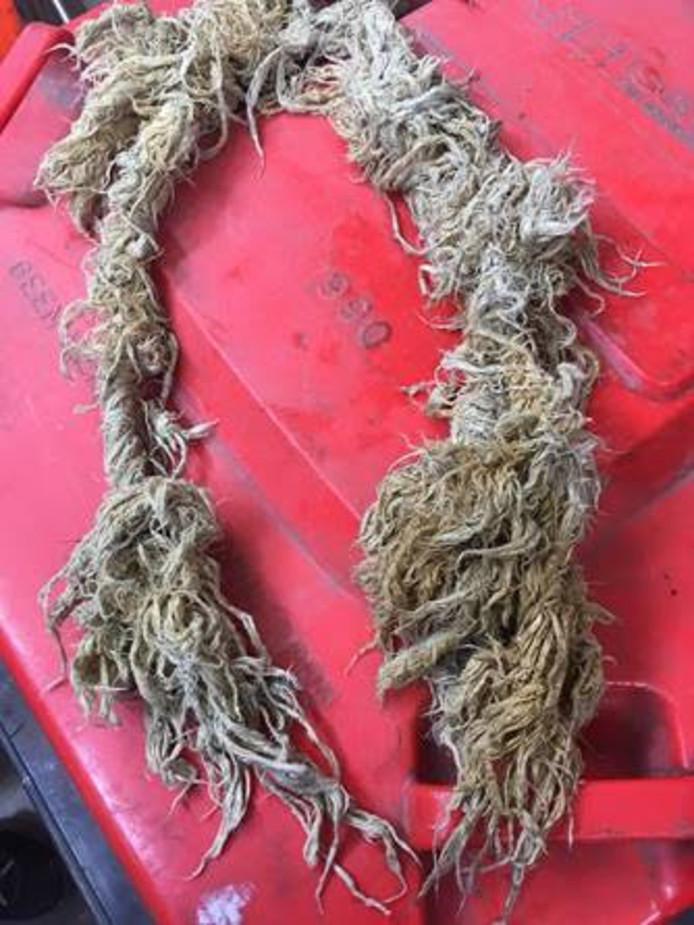 Dit soort stukken touw treft waterschap Scheldestromen regelmatig aan in het riool onder Sint Philipsland.