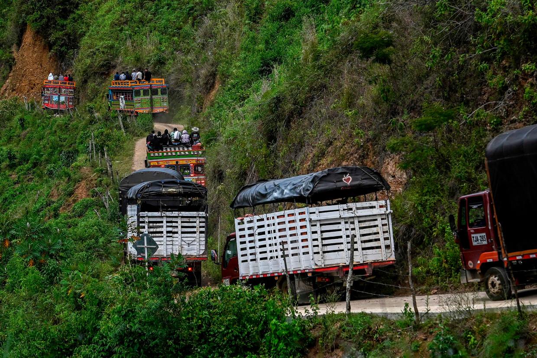 Voormalige guerrilleros en hun familieleden worden half juli met traditionele bussen ('chivas') naar veiliger gebied verplaatst nadat in hun kamp nabij Ituango, in Noordwest-Colombia, elf ex-strijders waren vermoord.