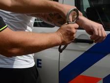 Twee mannen gearresteerd om gewapende straatroven in Hulst