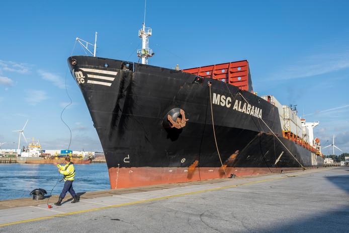 De containeroverslag nam in 2019 verder toe, onder meer doordat reder MSC de haven van Vlissingen opnam in zijn netwerk.