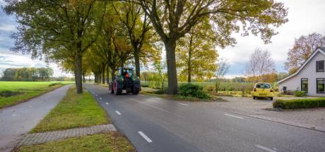 Gemeente werkt aan herstel oude boerenlandschap Wintelre