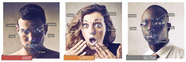 De software van VicarVision herkent emoties Beeld null