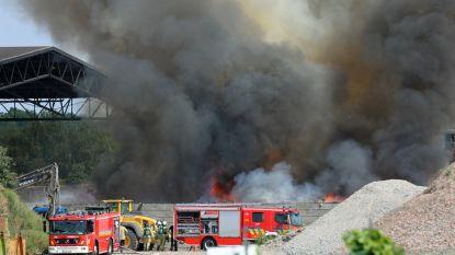 Afvalbrand met enorme rookontwikkeling in Desteldonk