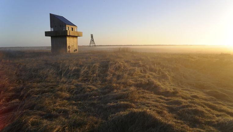 Het vogelwachtershuisje op Griend Beeld Thijs Heslenfeld