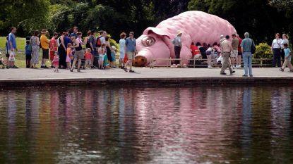 Booms theatervarken te zien in Zwitserland