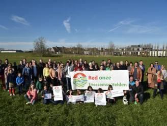 """Actiecomité blijft protesteren tegen komst sociale wijk Tussenveld, ook schepen is geen fan: """"Kwal van een project, maar de nood aan sociale woningen is hoog"""""""