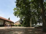 Basisschool in Bussloo verlost van jeukrupsen dankzij actie van vader en hovenier