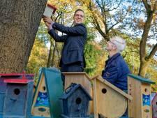 Oosterhout: 750 vogelhuisjes tegen eikenprocessierups