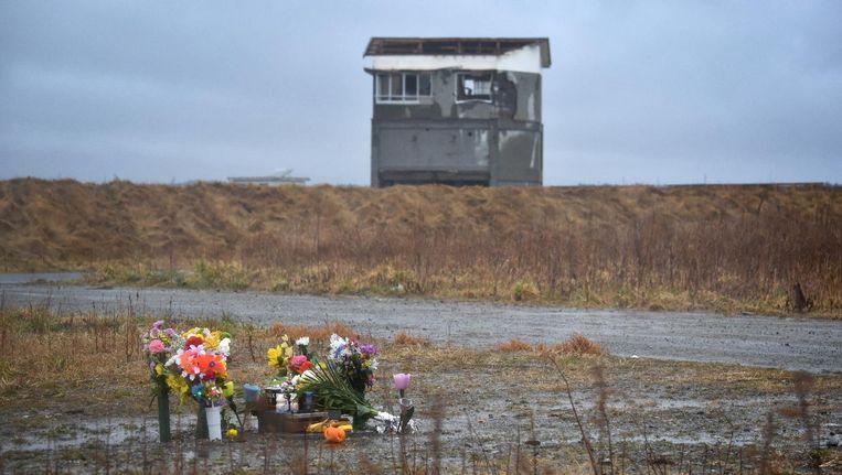 Bloemen die zijn geplaatst op een plek getroffen door de Tsunami. Beeld Jiji Press