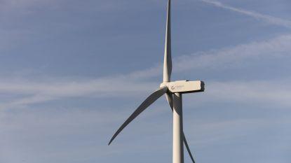 """Westerlo wil enkel nog windmolens langs lijninfrastructuur in industriezone van Oevel: """"Projecten vlak bij de woonkern kunnen voor ons niet"""""""