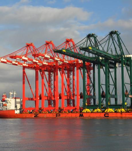 Vijf gigantische containerkranen schuiven langzaam over de Westerschelde naar Antwerpen