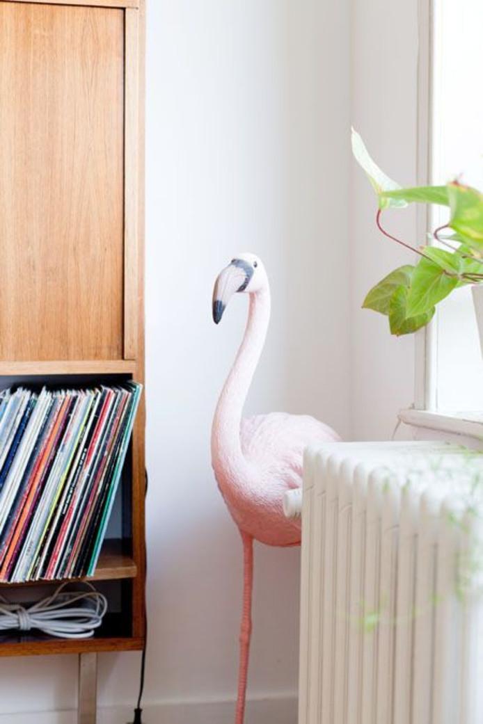 Een flamingo in de hoek fleurt het geheel op
