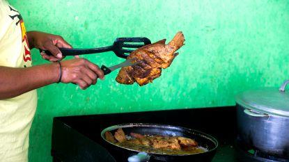 Een op de drie gevangen vissen belandt nooit op ons bord
